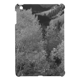 B&W Aspen 6 iPad Mini Cases