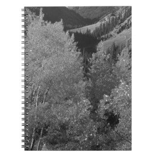 B&W Aspen 6 Notebooks