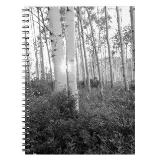 B&W Aspen 7 Notebooks