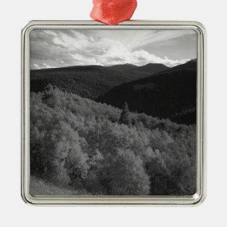 B&W Aspen 8 Christmas Ornament