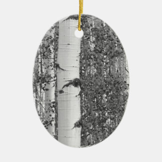 B&W Aspen 9 Christmas Ornament