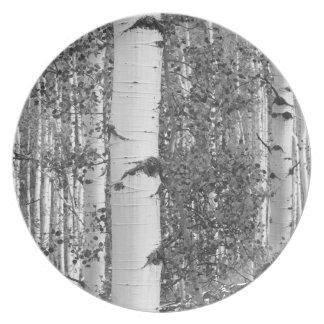 B&W Aspen 9 Plate