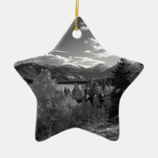 B&W Aspen Christmas Ornament