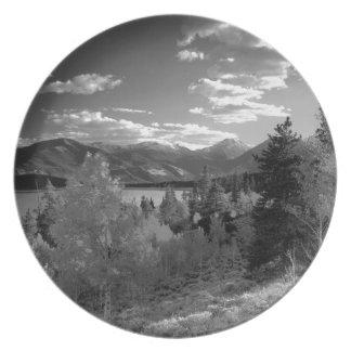B&W Aspen Plate