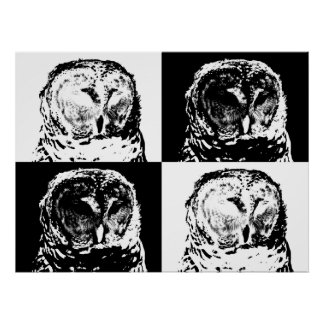 B/W Barred Owl Pop Art Poster