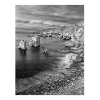 B&W beach coastline, California Postcard