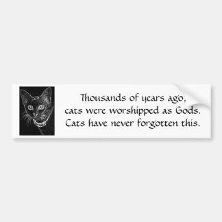 B&W Cat Bumper Sticker
