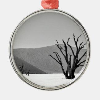 B&W Dead Vlei Silver-Colored Round Decoration