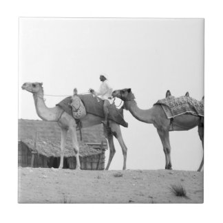 B&W Dubai desert Small Square Tile