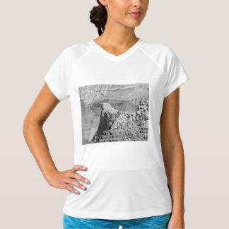 B&W Grand Canyon 3 T-Shirt