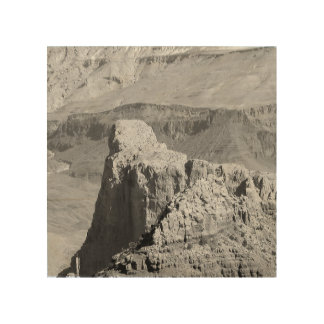 B&W Grand Canyon 3 Wood Wall Art