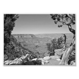 B&W Grand Canyon National Park 3 Photographic Print