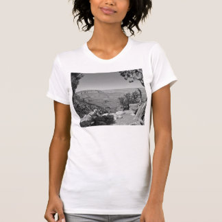 B&W Grand Canyon National Park 3 T-Shirt