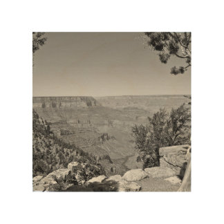 B&W Grand Canyon National Park 3 Wood Print