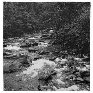 B&W Great Smoky Mountains river Napkin