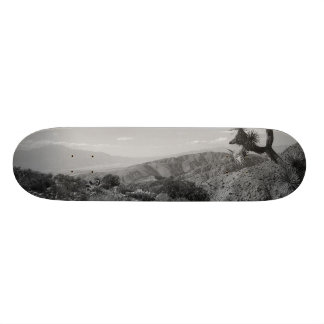 B&W Joshua Tree National Park 2 20.6 Cm Skateboard Deck