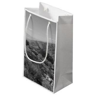 B&W Joshua Tree National Park 2 Small Gift Bag