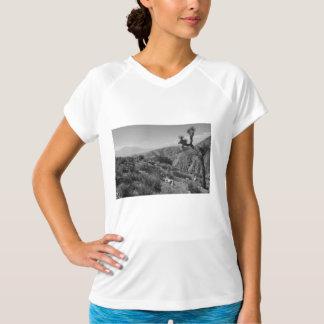 B&W Joshua Tree National Park 2 T-Shirt