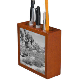 B&W Joshua Tree National Park 3 Desk Organiser