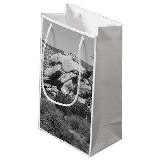 B&W Joshua Tree National Park 5 Small Gift Bag