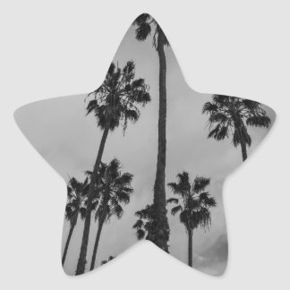 B&W Los Angeles palms Star Sticker