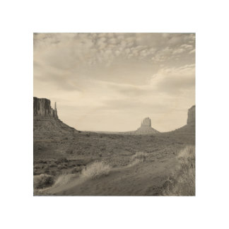 B&W Monument Valley 4 Wood Print