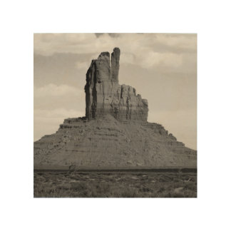 B&W Monument Valley 5 Wood Print