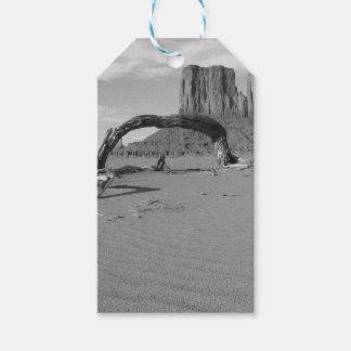 B&W Monument Valley in Arizona/Utah 2