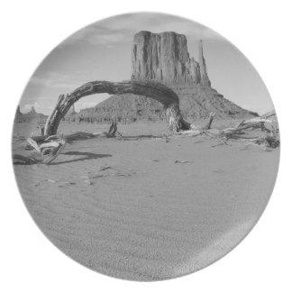 B&W Monument Valley in Arizona/Utah 2 Plate