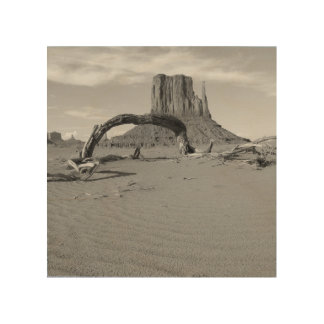 B&W Monument Valley in Arizona/Utah 2 Wood Wall Art