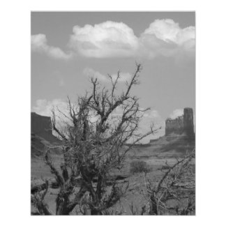 B&W Monument Valley in Arizona/Utah 3 11.5 Cm X 14 Cm Flyer