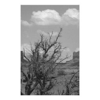 B&W Monument Valley in Arizona/Utah 3 14 Cm X 21.5 Cm Flyer
