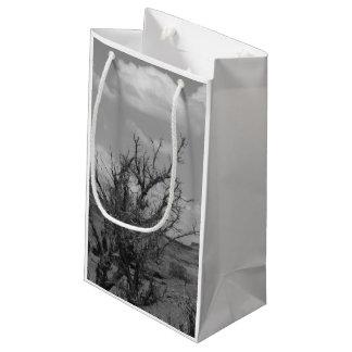 B&W Monument Valley in Arizona/Utah 3 Small Gift Bag
