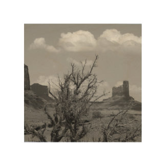 B&W Monument Valley in Arizona/Utah 3 Wood Print