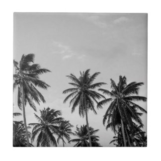 B&W Palm 6 Tile