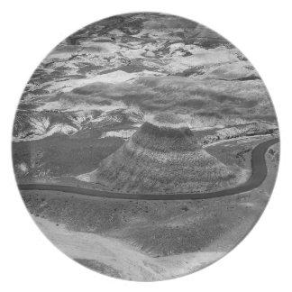 B&W Petrified Forest Plate