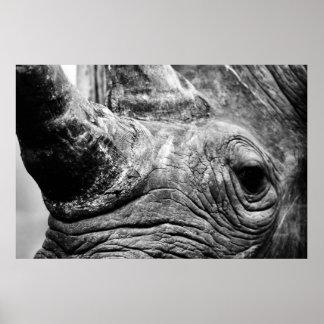 B W Rhino Print