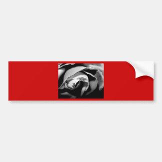 B&W Rose Bumper Stickers