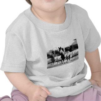 B&W Running Horse T Shirts