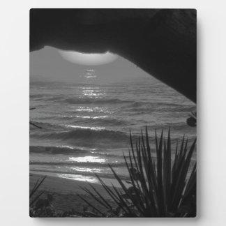 B&W Tropical Sea Plaque