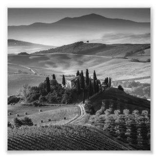 B&W Tuscany Photograph
