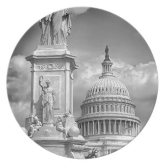 B&W Washington DC Plate