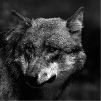 B&W Wolf Photo Sculpture Badge