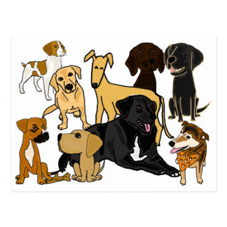 BA- Awesome Puppy Dogs Postcard