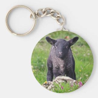 Baa-Baa Black Sheep Keyring Basic Round Button Key Ring
