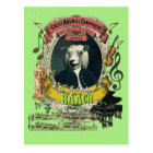Baach Funny Sheep Great Animal Composer Bach Postcard
