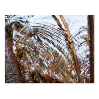 Babbling Brook (color) Postcard