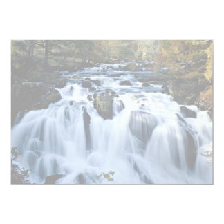 Babbling brook in forest from the Forest 5x7 Paper Invitation Card