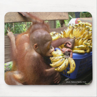 Babies & Bananas in Borneo Mouse Mat