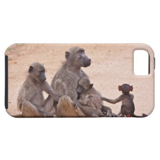 Baboon family sitting on ground iPhone 5 case